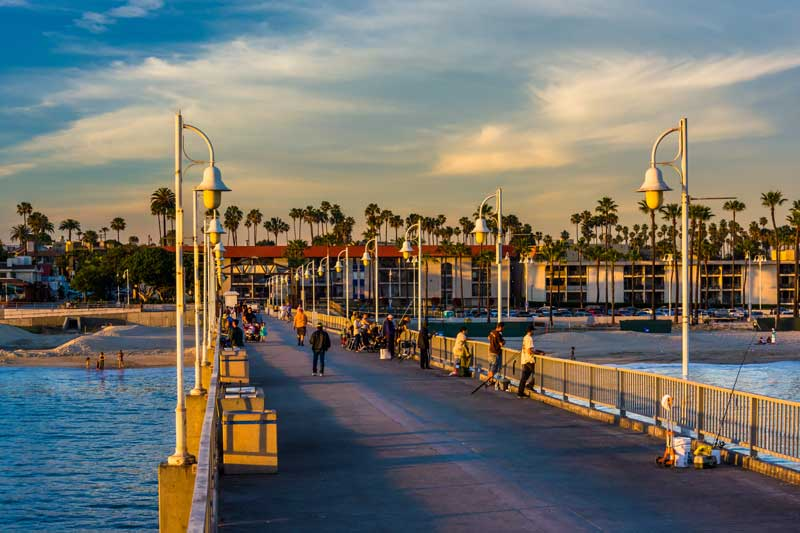Shop CBD For Dogs And Cats In Long Beach Pier