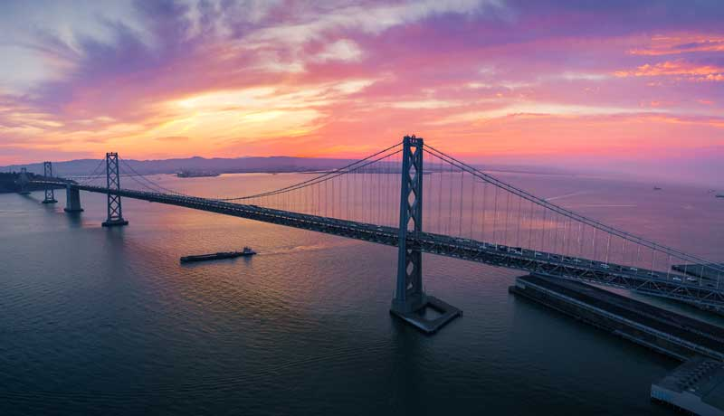 Shop CBD For Dogs And Cats In Oakland Bay Bridge