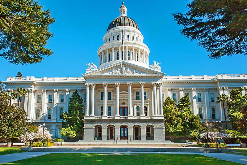 Shop CBD For Dogs And Cats In Sacramento The Capital City Of California
