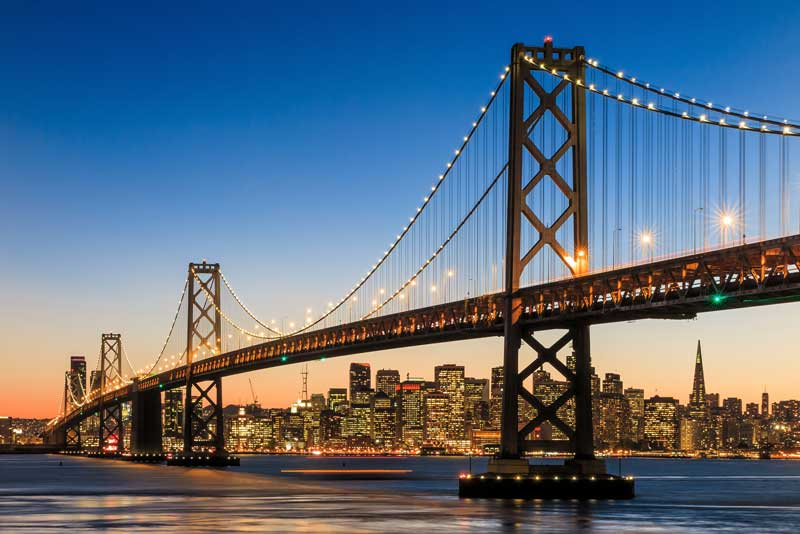 Shop CBD For Dogs And Cats In San Francisco Bay Bridge