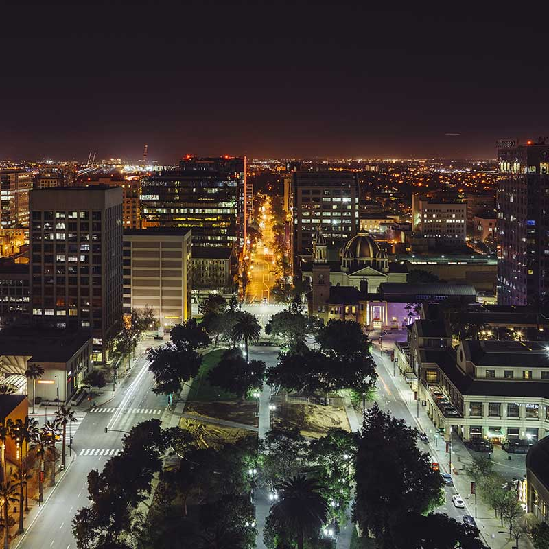 Shop CBD For Dogs And Cats In San Jose City At Night