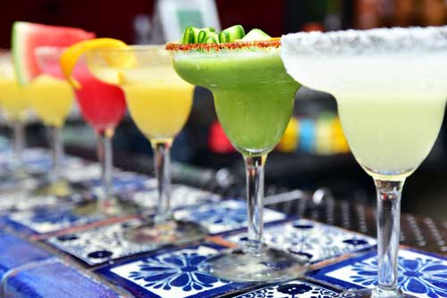 Shop CBD For Dogs And Cats In Dallas Texas Margaritas
