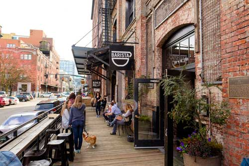 Shop CBD Oil For Dogs And Cats In Portland Restaurant