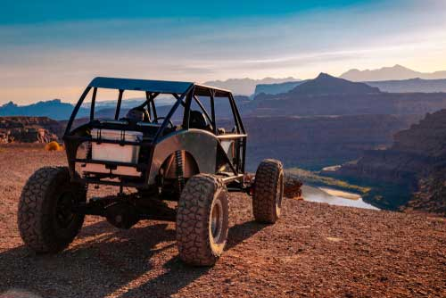 Shop CBD Oil For Dogs And Cats In Salt Lake City Dune Buggy