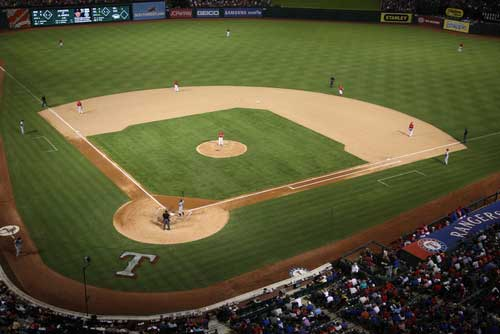Shop CBD For Dogs And Cats In Arlington Baseball Game