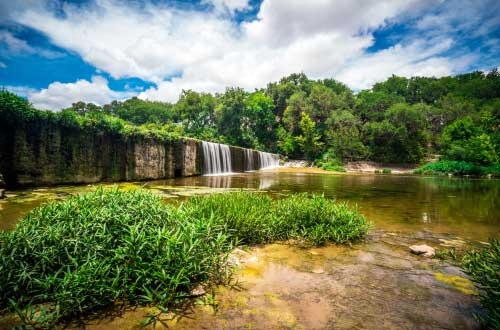 Shop CBD For Dogs And Cats In Austin Park Waterfall