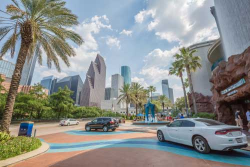 Shop CBD For Dogs And Cats Houston Downtown