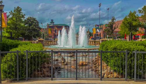 Shop CBD For Dogs And Cats Oklahoma City Fountain