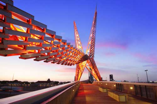 Shop CBD For Dogs And Cats Oklahoma City Skydance Bridge At Night