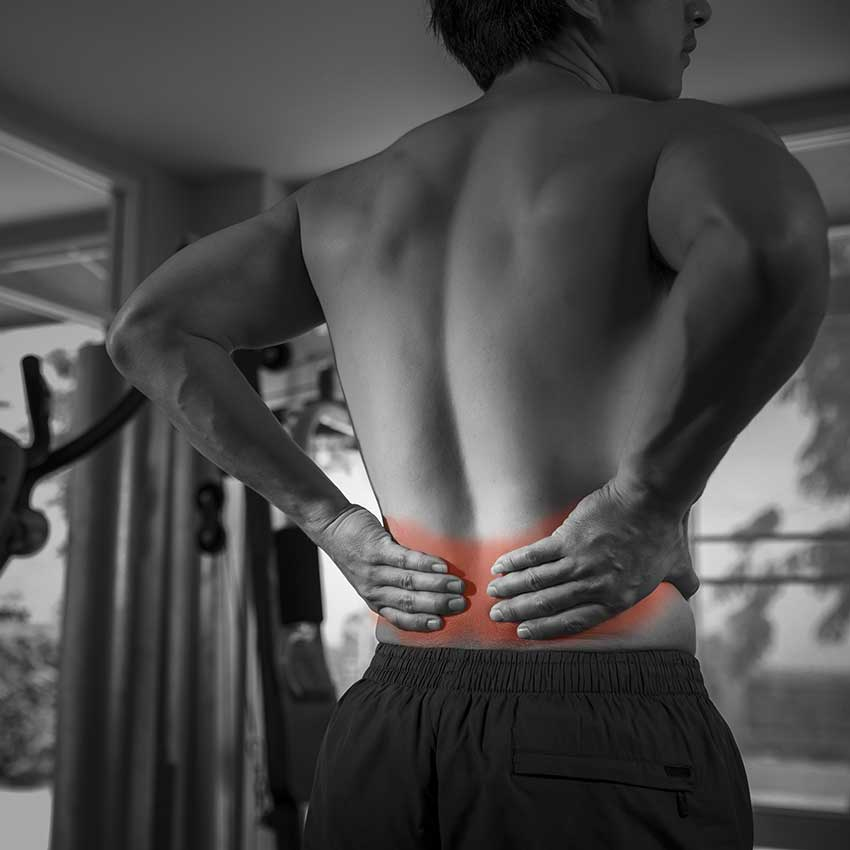 Arnica Benefits & Uses