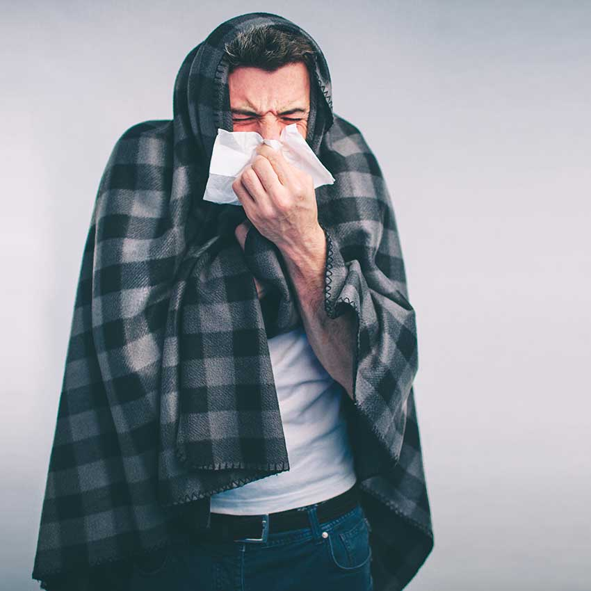 Echinacea Root Benefits: Rid Yourself of Colds & Flus