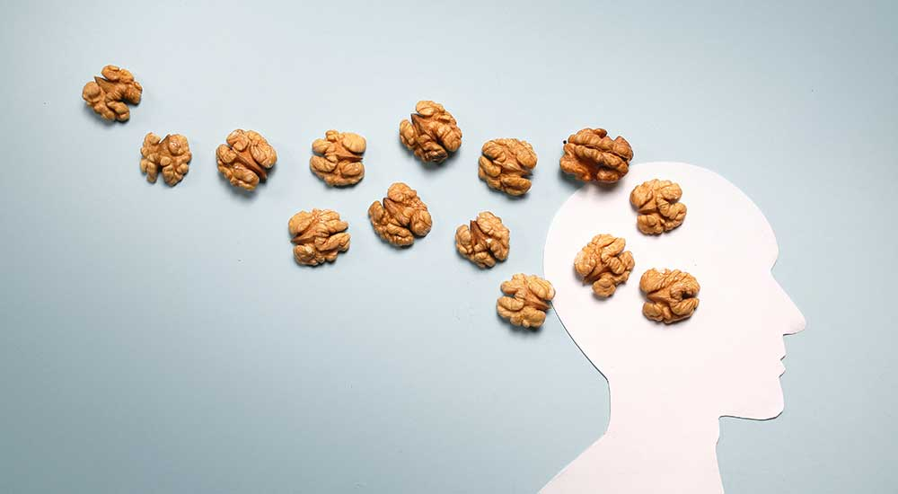 Nuts To Stimulate Brain Power